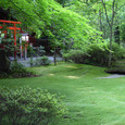 嵯峨野 野宮神社