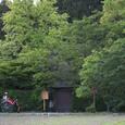 嵯峨野 落柿舎