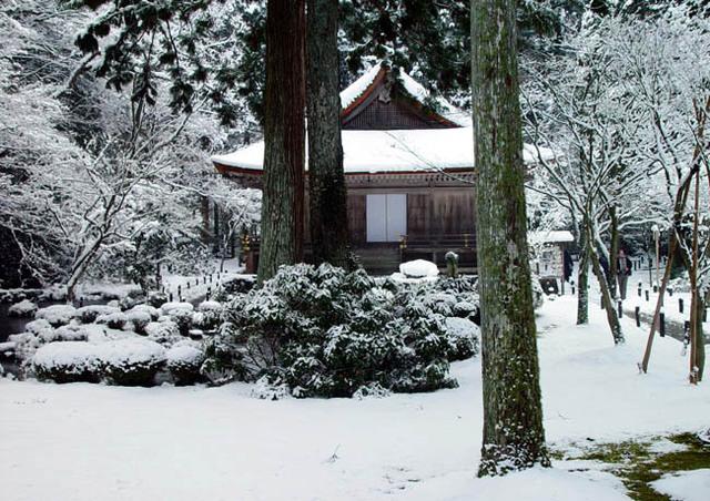 三千院  雪