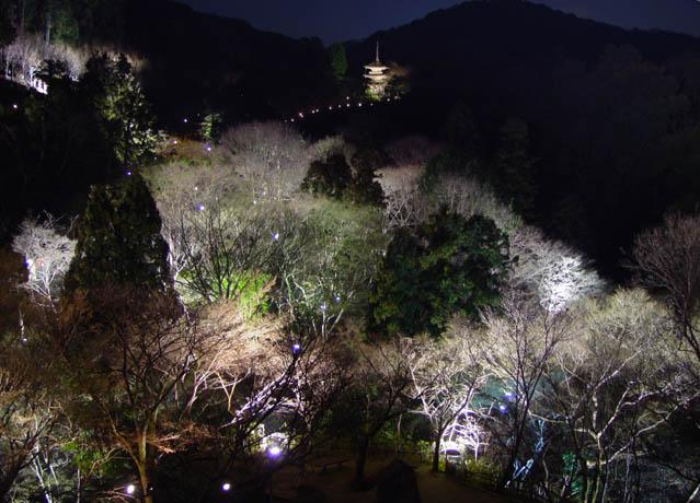 花灯路 2005春 清水寺 子安の搭を望む