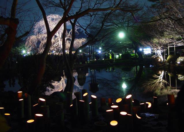 花灯路 2005春 円山公園