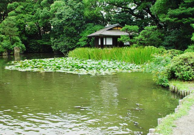 渉成園(枳殻邸)