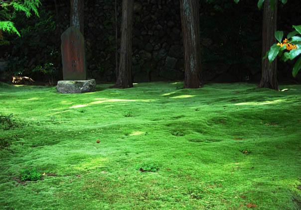東福寺 明暗寺